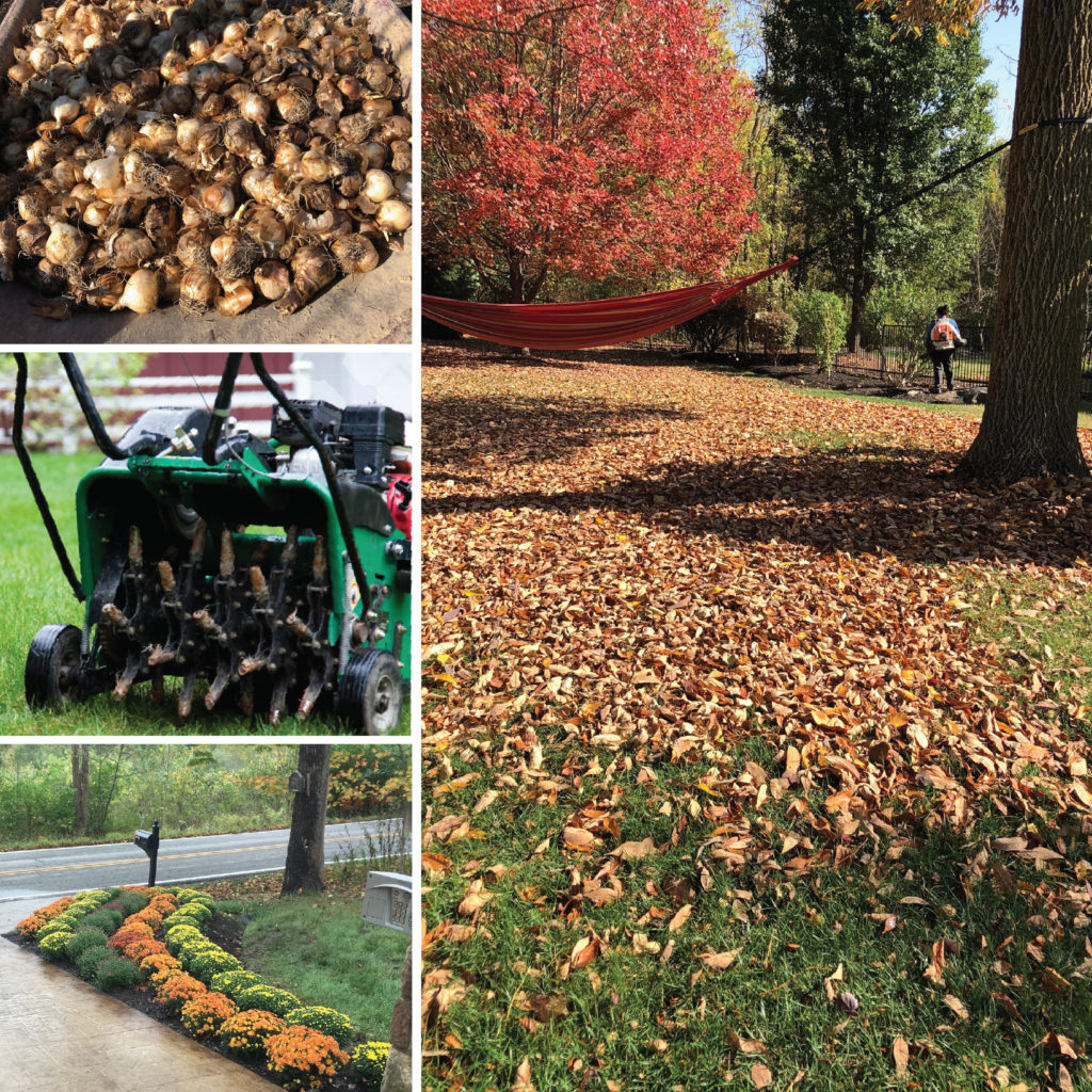 fall-landscape-care