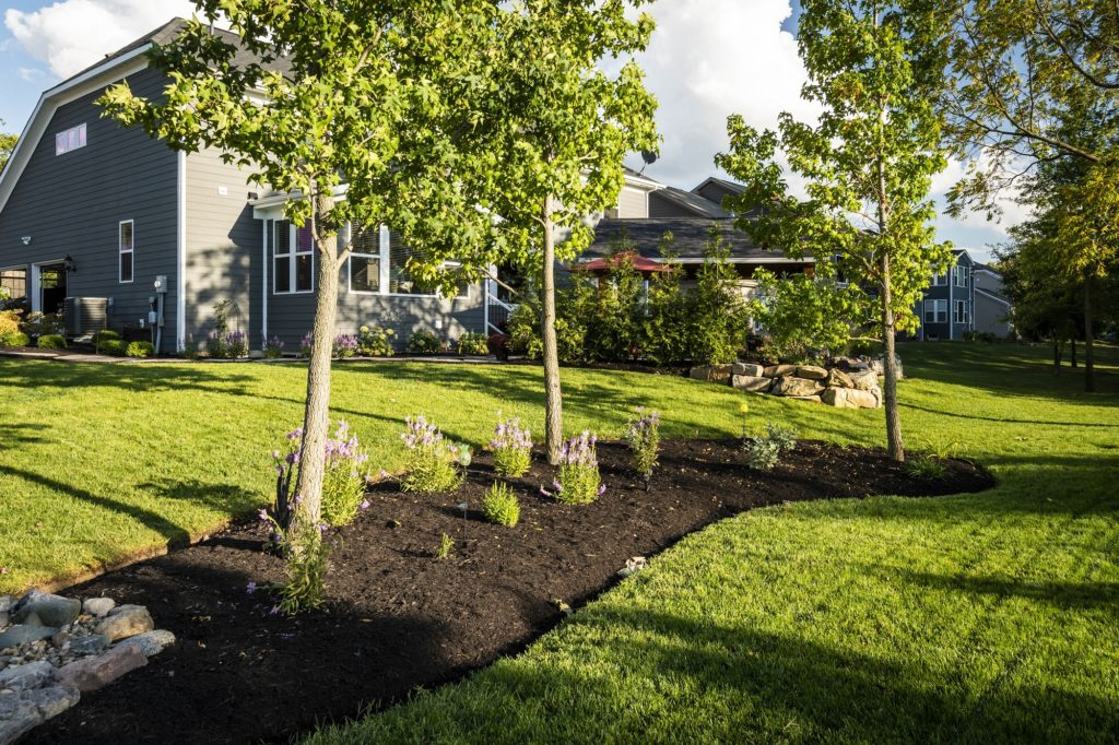 Property Pros Maintenance Programs will help your landscape thrive.